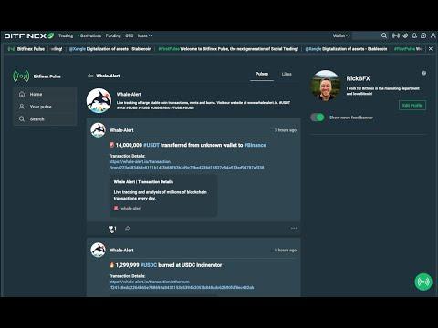 Bitfinex Pulse - Account Creation Tutorial