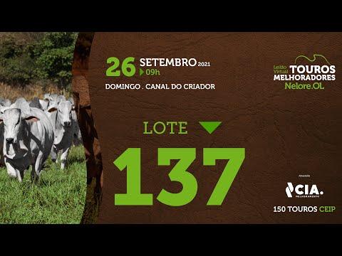 LOTE 137 - LEILÃO VIRTUAL DE TOUROS 2021 NELORE OL - CEIP