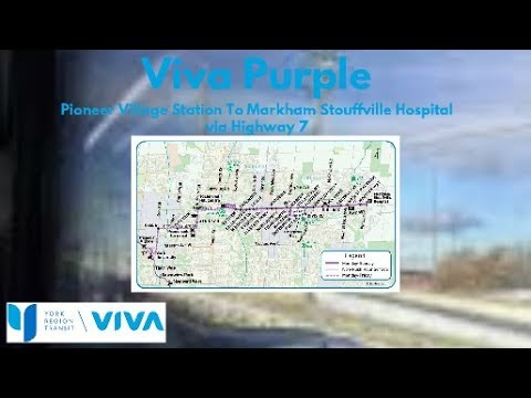 2010 NovaBus LFX #1091 On Viva Purple (Pioneer Village Station To M-S Hospital - Full)