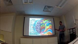 11 - brainmaps