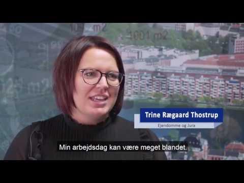 Trine Geodatastyrelsen