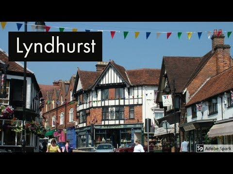 Travel Guide Lyndhurst Hampshire UK Pros And Cons