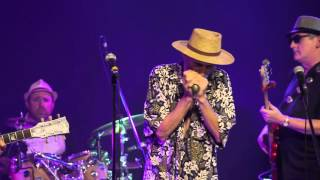 Mud Bay Blues Band - Trouble - Live at Blue Frog Studios