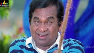 Brahmanandam Comedy Scenes Back to Back | Volume 3 | Telugu Comedy Scenes | Sri Balaji Video