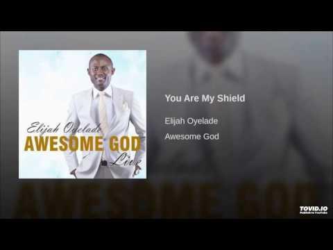 You are my shield by Elijah Oyelade