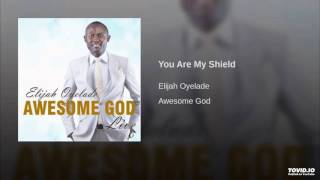 You are my shield by Elijah Oyelade