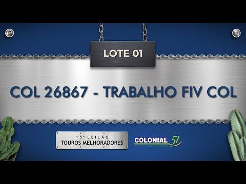 LOTE 01   COL 26867