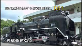消えたSL(蒸気機関車)~D51形とE10形の運命(青梅鉄道公園)