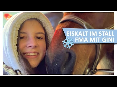 Eiskalt im Stall ❄️FMA mit Gini