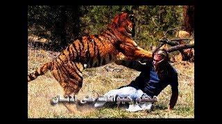 ◄أقوى مقاطع من هجوم حيوانات على الانسان║شيئ لا يصدق !