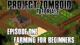 PROJECT ZOMBOID TUTORIALS - #1 - FARMING FOR BEGINNERS