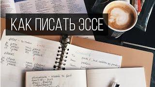 Как Писать Эссе? Американский Университет | Влог Обыкновенный thumbnail