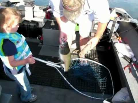 Triploid Fishing At Rufus Woods