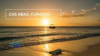 Cas Abou   Curacao Scuba Diving Site   Dutch Caribbean