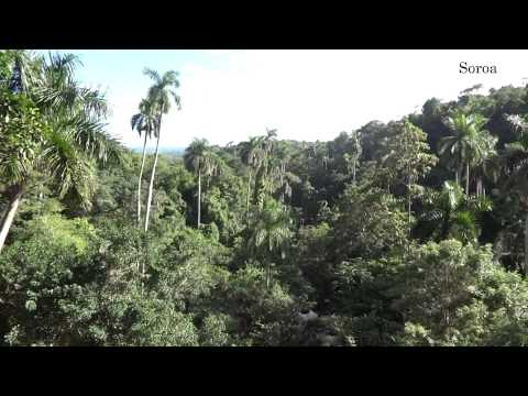 My trip to Cuba - November 2013 HD 1080