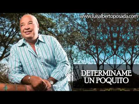 Determiname un poquito   Luis Alberto Posada
