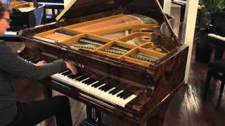 Chopin fantaisie op.49 - Bechstein grand piano