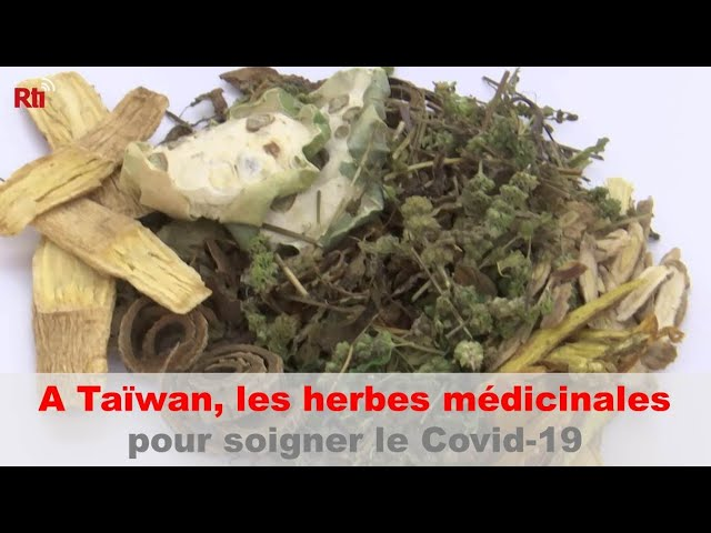 A Taïwan, les herbes médicinales montrent des résultats encourageants contre le Covid-19