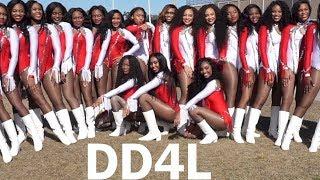 Dancing Dolls of Jackson, Mississippi (DD4L) MLK Parade [Seniors' l...