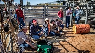 Cowboys & Cowgirls Join Australia
