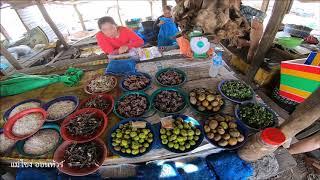 เที่ยวตลาดลาวของป่า บ้านน้ำดิก เมืองหินบูน   แม่โขง ออนทัวร์