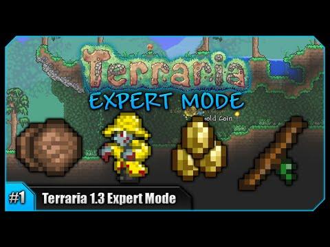 Terraria Expert Mode Let S Play 1 3 Youtube