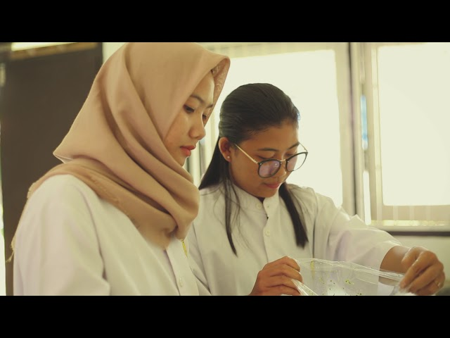 Video Tutorial: Pemanfaatan Lemna untuk Ransum Bebek