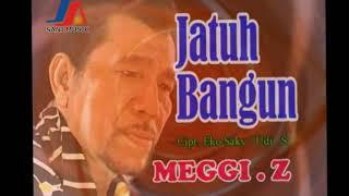 Meggi Z