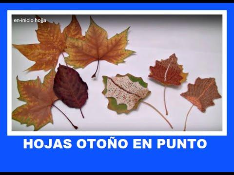 Hojas de oto o en punto decoracion hojas navidad youtube - Hojas de decoracion ...
