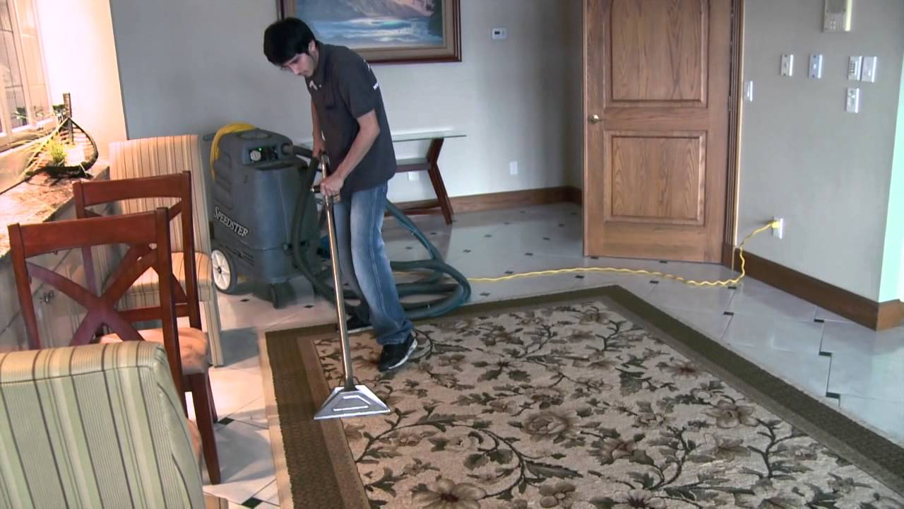 Americlean North Fort Myers Tile Grout Carpet And Area Rug