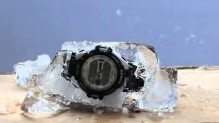 ep1306 epozz watch