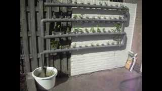 Hydroponics made simple
