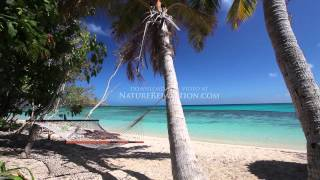 """""""Islands of Paradise"""" Fiji 1 HR (Nature Sounds) Tropical Relaxation Video 1080p"""