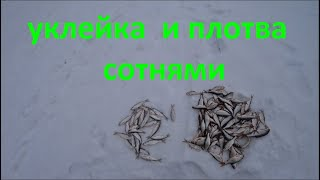 Рыбалка на реке как найти рыбу в каких местах клюет даже в безклевье fishing in Russian