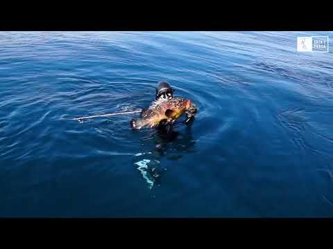 caza-y-pesca-tv---escuela-de-pesca-submarina---pesca-profunda
