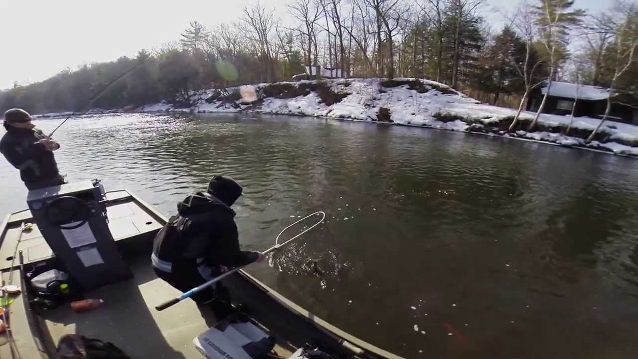 Spring steelhead fishing the muskegon river in michigan for Muskegon river fishing
