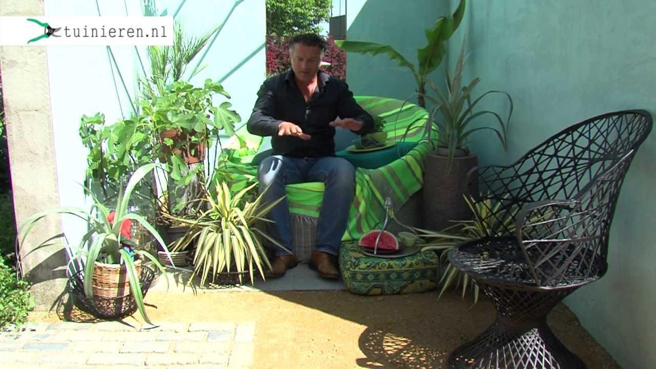 Tropische tuin aanleggen youtube for Afvoerput tuin aanleggen