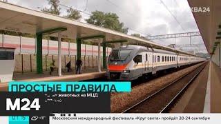 На МЦД можно будет бесплатно провозить домашних животных - Москва 24