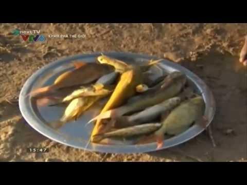 Series Khám phá thế giới: Sông Nin huyền bí - Ai cập HDTV