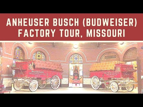 Anheuser Busch (Budweiser) Factory Tour in Missouri
