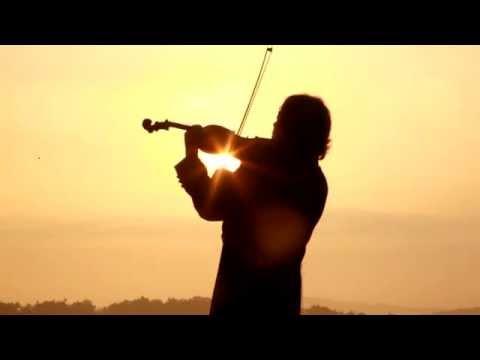 Swan Goose--鸿雁。violinist Sky, Music from heaven--醉人的小提琴手 石野雪峰