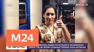 В Сети появилось видео падения артистки в цирке - Москва 24