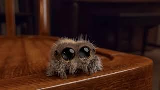 Lucas la araña (Fandub Latino by Ralotrex)