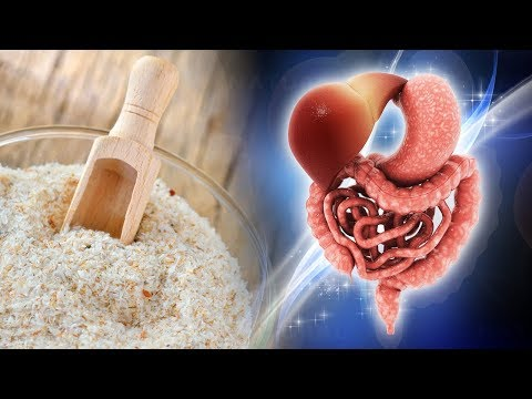 4 Incredible Reasons to Include Psyllium Husk Into Your Diet (Isabgol)