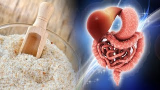 4 Incredible Reasons to Include Psyllium Husk Into Your Diet Isabgol