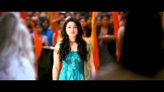 Badrinath Trailer 2011