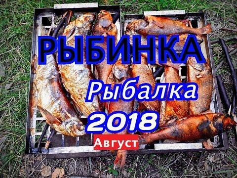 РЫБАЛКА НА РЫБИНКЕ,ГОРОД ВЕСЬЕГОНСК,АВГУСТ 2018