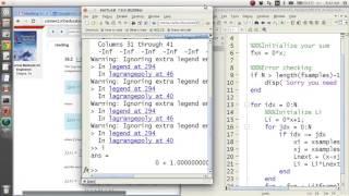 MATLAB Help - Automatic Lagrange Polynomials
