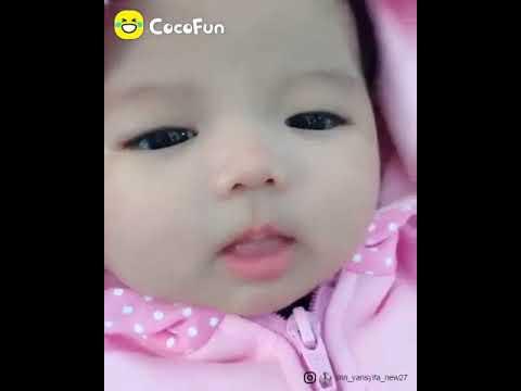 Bayi Imut Lucu Youtube