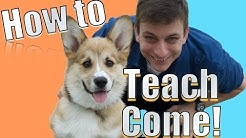 Come when Called: The FASTEST Way to Teach YOUR DOG to COME WHEN CALLED ANYWHERE!